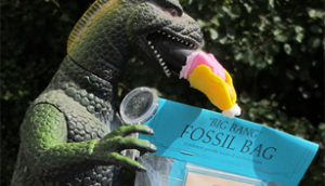 Fossil Crystals Dinosaur Party Bags