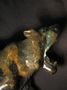 Labradorite tiger