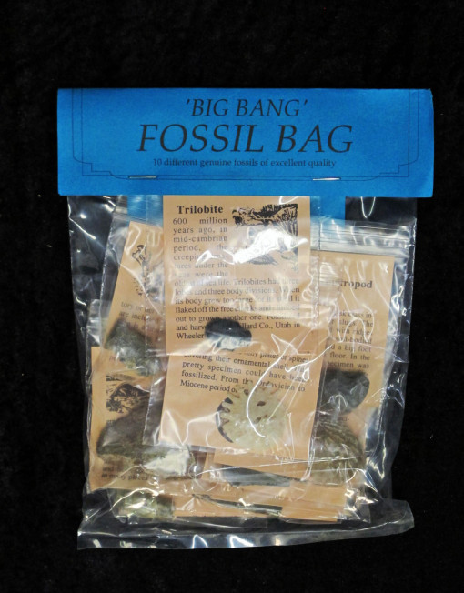 Fossil Party Bags