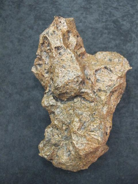 Campo di Cielo Meteorite found in Northern Argentina