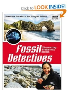 kids activities: Fossil Detectives Book