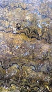 Stromatolites Cochambamba Bolivia