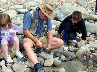 fossil hunting with the kids