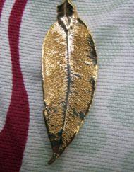 gold eucalyptus leaf