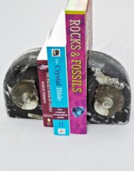 moroccan fossil bookends