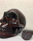 Ancestralite,Ancestralite skull